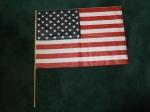 16_webelos_small-flag