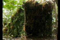 wilderness-survival-emergency-shelter